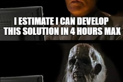 Estimated solution