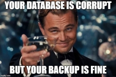 corrupt db but good backup