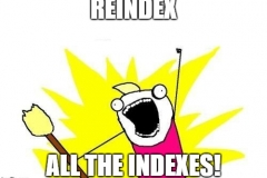 reindex all the index